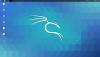Kali_Screenshot_2020-08-15_16-08-56.png